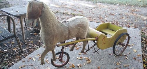 Antiguo Sulky Ciclo De Madera Con Caballito Jueguete Retro