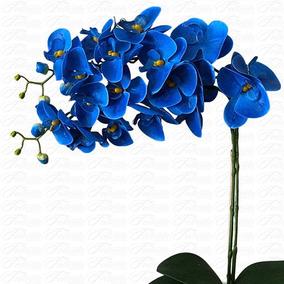 250 Sementes De Orquídeaphalaenopsisazul