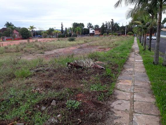 Terreno Residencial À Venda, Centro, Campo Bom. - Te0625