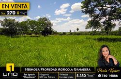 Propiedad Agricola Ganadera En San Ignacio De Velasco
