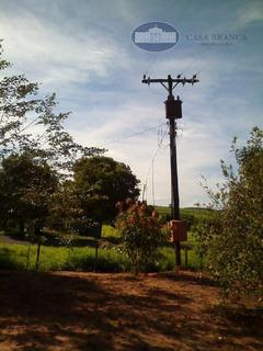 Sítio Rural À Venda, Uchôa-sp - Si0004