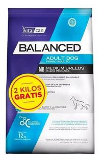 Vitalcan Balanced Perro Adulto Grande X 15 + 2 Kg