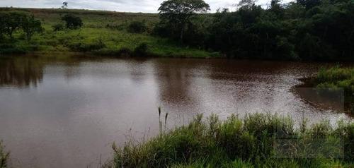 Fazenda À Venda, 65 Alqueires Por R$ 3.000.000 - Sítio Rural - São Sebastião Do Paraíso/mg - Fa0012