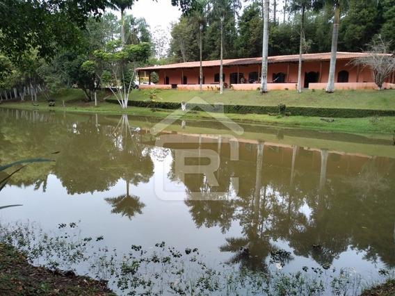 Sítio Rico Em Água, 3 Lagos E Piscina - 71 - 68173965
