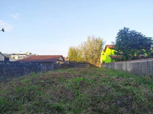 Terreno À Venda, 500 M² - Jardim São Lourenço - Bertioga/sp - Te0787