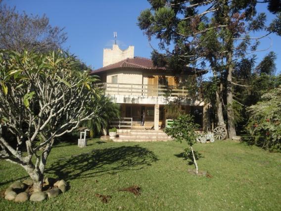 Sitio - Lomba Do Pinheiro - Ref: 383859 - V-cs36005927