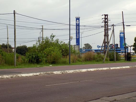 Lote En Alquiler Camino Centenario Y 517