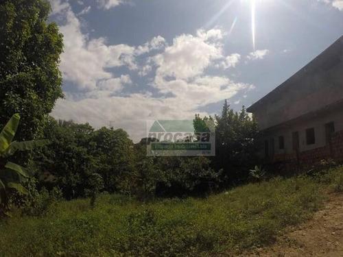 Terreno À Venda, 2400 M² Por R$ 1.300.000,00 - Pq Das Laranjeiras - Manaus/am - Te0200