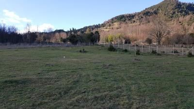 Parcela De 5000m2, Licanray, Vende Su Dueño, Terreno Chileno