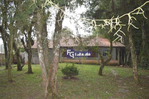 Chácara Com 5.122,10 M² À Venda, 5122 M² Por R$ 315.000 - Capão Grosso - São José Dos Pinhais/pr - Ch0033