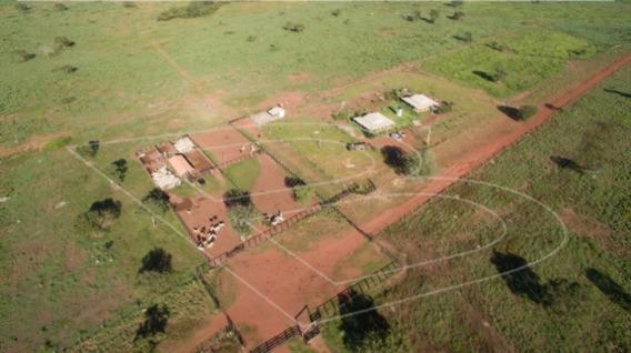 Chácara / Sítio / Fazenda - Venda - Lagoa Da Confusao - Cod. 11825 - V11825