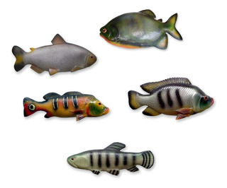 5 Peixes Decorativo Pacu Tilapia Traira Matrinxã Tucunare