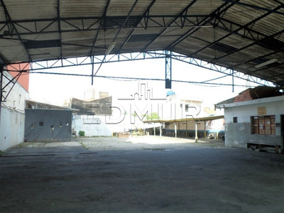 Terreno - Centro - Ref: 24149 - V-24149