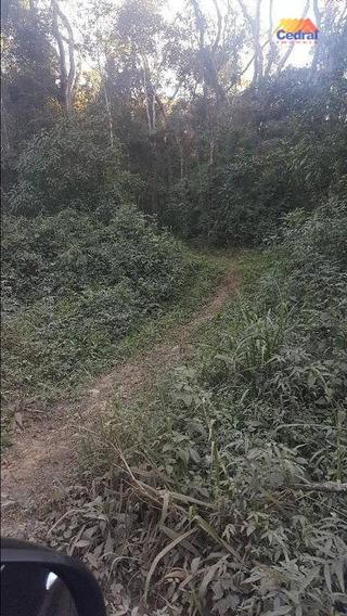 Sítio Rural À Venda, Nha Luz, Salesópolis - Si0021. - Si0021