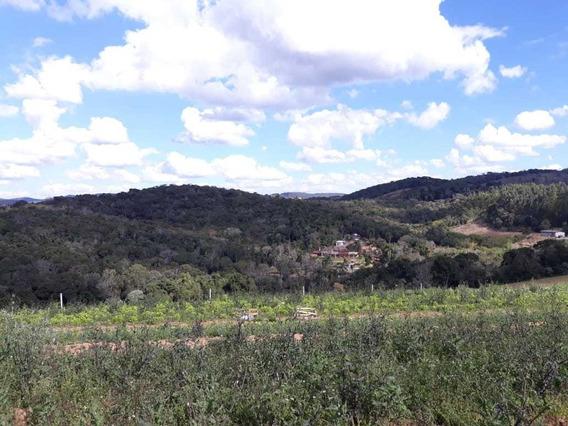 L. Ibiúna- Lotes Com Área Verde