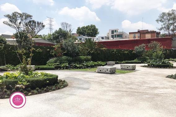 Departamento Renta Romulo O´farril - Olivar De Los Padres