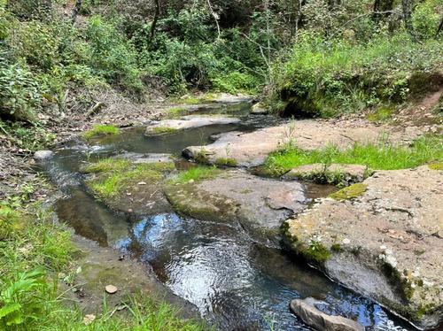 Imagen 1 de 14 de Terrenos De 480m2 A Orilla De Rio En Zacatlan, Puebla