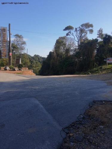 Imagem 1 de 15 de Terreno Para Venda Em Mairiporã, Jardim Sabambaia - 8063yg_1-1599393