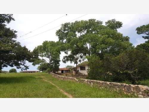 Compra Terreno De 116 Hectáreas En Chiapas, Con Producción Agrícola De Árboles Frutales Y Cedro
