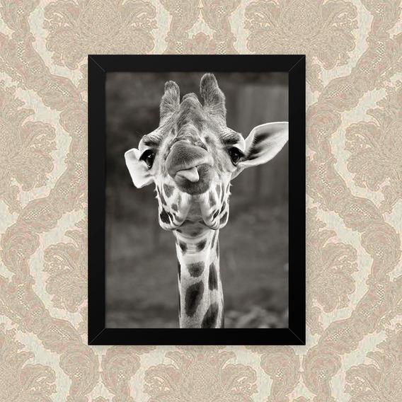 Quadro Girafa Lingua 33x43cm