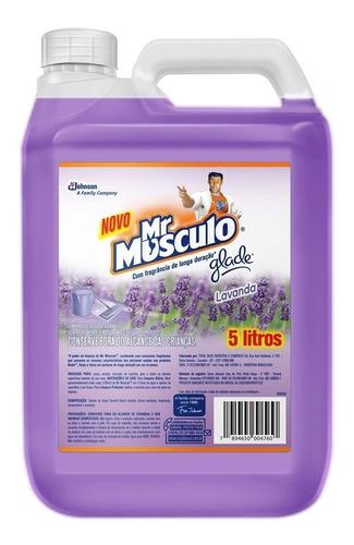 Limpador Perfumado Glade Lavanda Mr Músculo Galão 5l