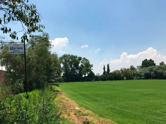 Campo De Fútbol Naranjo