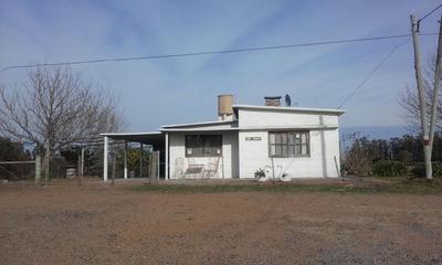 Casa Con 3 Hectareas De Campo Ruta 9 Km 84.500