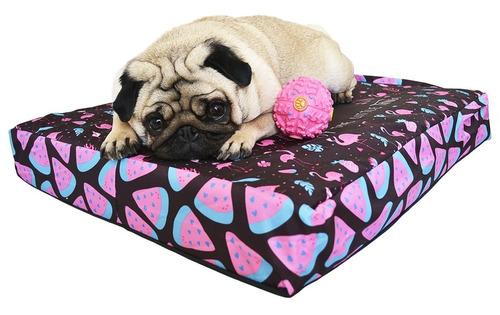 Imagen 1 de 8 de Cucha Perro Cama Para Perros 50x80 Espuma Summer Perro