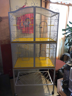 Casa De Lujo Para Aves