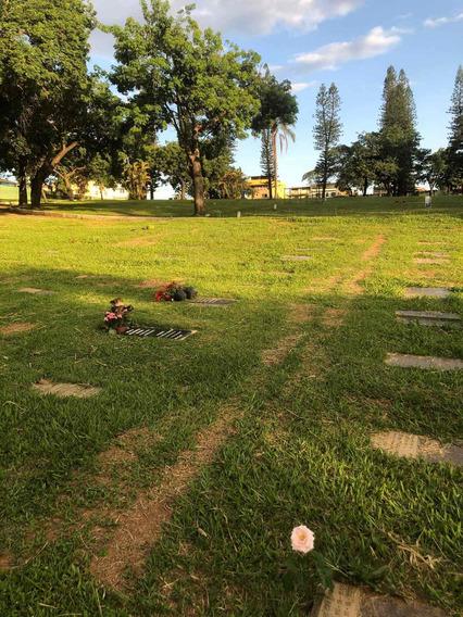 Jazigo Perpétuo De 2 Gavetas No Cemitério Parque Da Colina