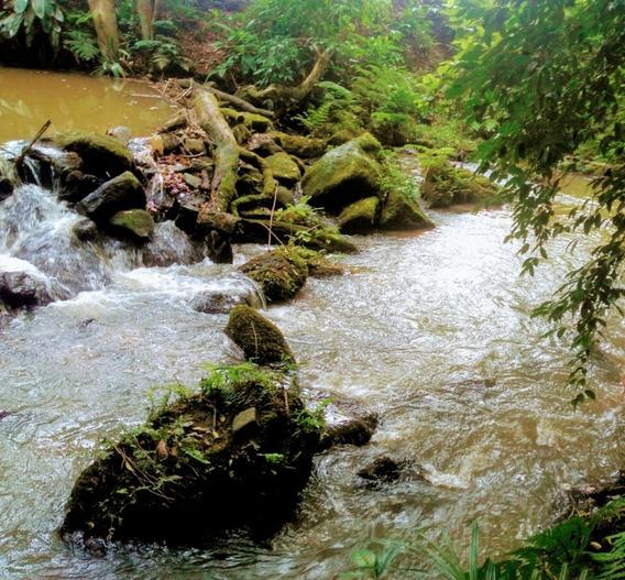 Juquitiba/lazer/morar/sitio C/mini-cachoeira/ref:04954