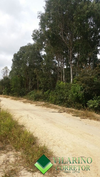 Area Na Serra De Caete - 178v