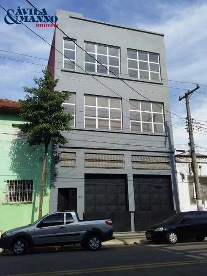 Galpão - Gl00334 - 33907549