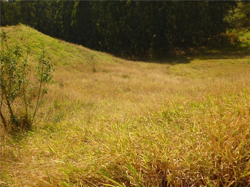 Imagem 1 de 5 de Terreno - Condomínio Itatiba Country Club - Te2242