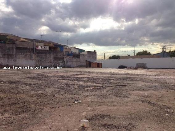 Terreno Para Locação Em São Bernardo Do Campo, Taboão - Elc01461_2-837066