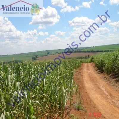 Venda - - Sítio Santa Toninha - Brotas - Sp - 1665c