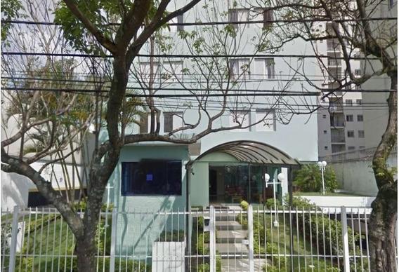 Apartamento Lauzane Paulista Sp Zn - 19567-1