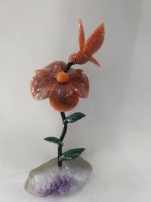 Passaro Beja Flor