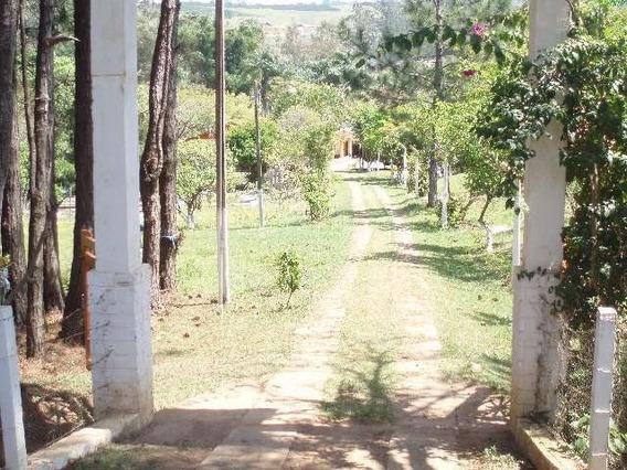 Venda Chácara / Sítio Rural Água Comprida Bragança Paulista R$ 600.000,00 - 32421v