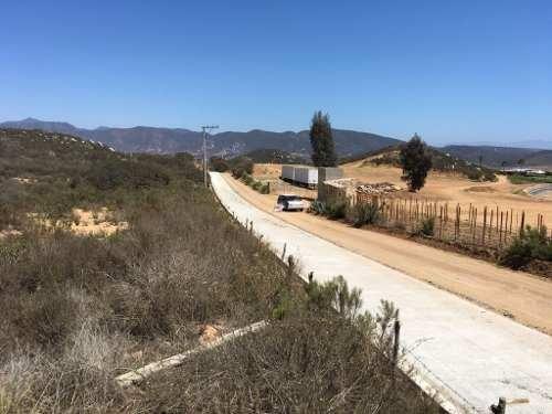 Remate De Hectáreas En El Corazón De La Ruta Del Vino Valle De Guadalupe