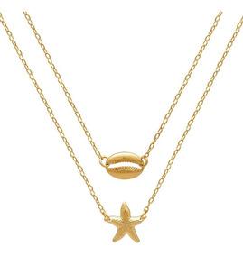 Escapulário Estrela Do Mar Buzio Búzios Folheado Ouro Lindo