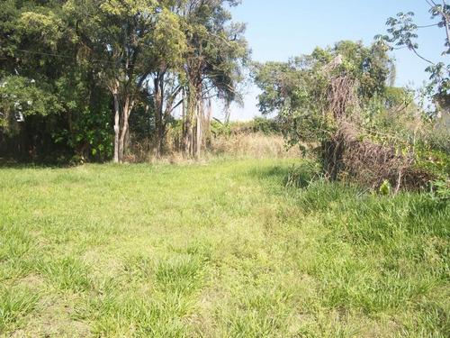 Imagem 1 de 7 de Terreno Para Venda Em Taubaté, Parque São Luís - Te0063_1-1893829