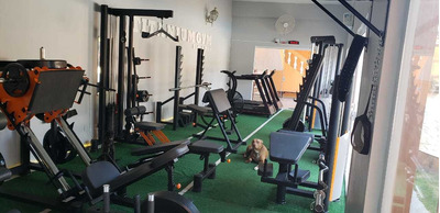 Aulas Particulares De Personal Trainer Em Musculação