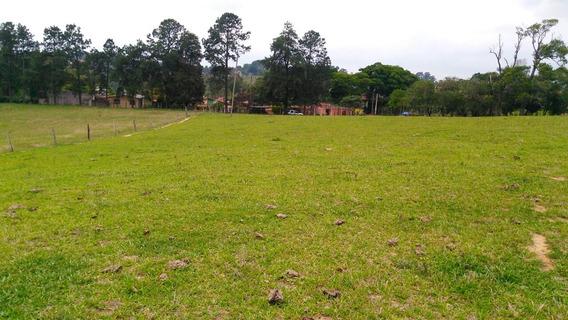Terreno Plano Na Rodovia Castelo Branco Km 68-mairinque