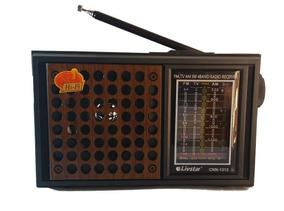 Rádio Analógico Antigo Portátil /am /fm Tv/sw