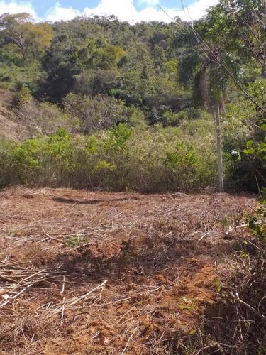Terreno Para Venda Em Piranga, Zona Rural - T39_1-1651875