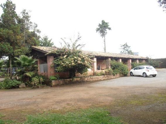 Terreno Para Venda Em São José Dos Pinhais, Borda Do Campo - Te-053_2-490320