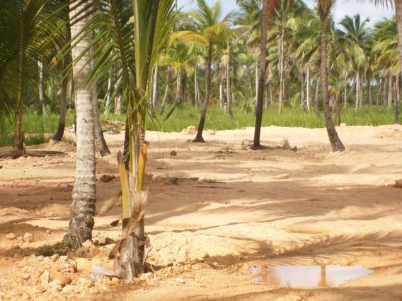 Vendo Terreno En Coson,las Terrenas A Minutos De La Playa