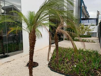 Prédio Para Alugar, 2024 M² Por R$ 38.000/mês - Jardim Do Trevo - Campinas/sp - Pr0105