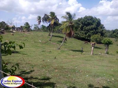 Finca Ganadera De Venta En La Altagracia, Rep. Dominicana